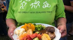 Great NZ Trek